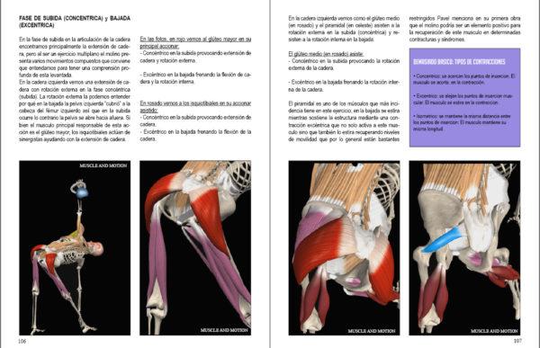 Molinos con kettlebells anatomia