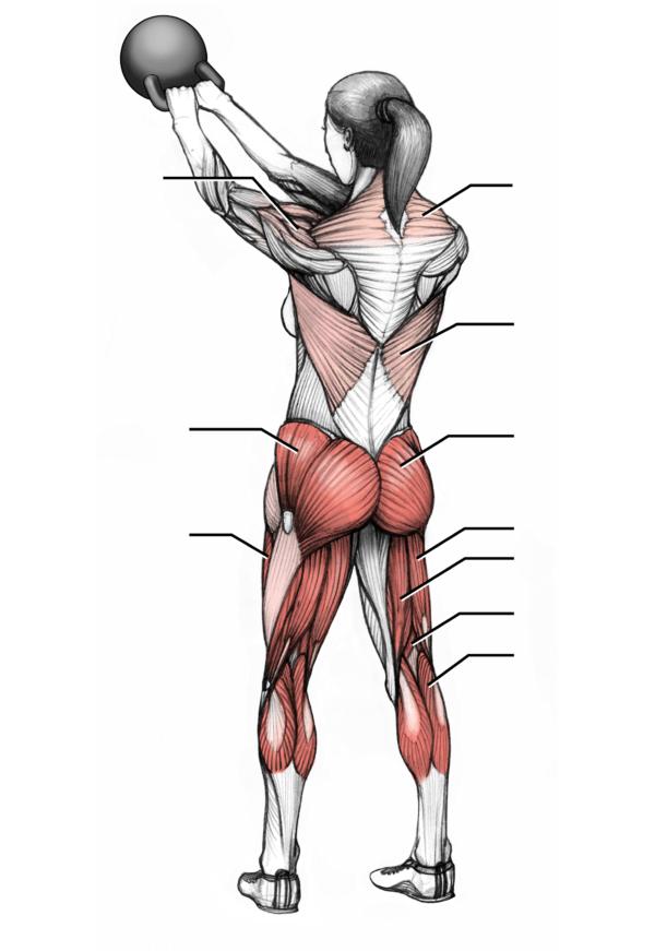 musculos en el swing