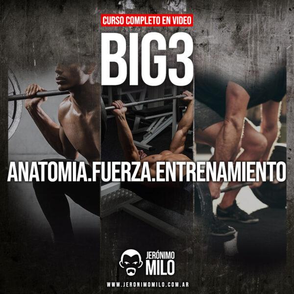 big3 curso en video